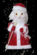 Рукавичка Дед Мороз
